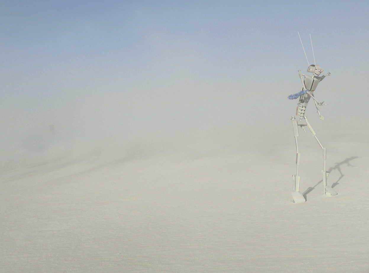 Art in Burning Man