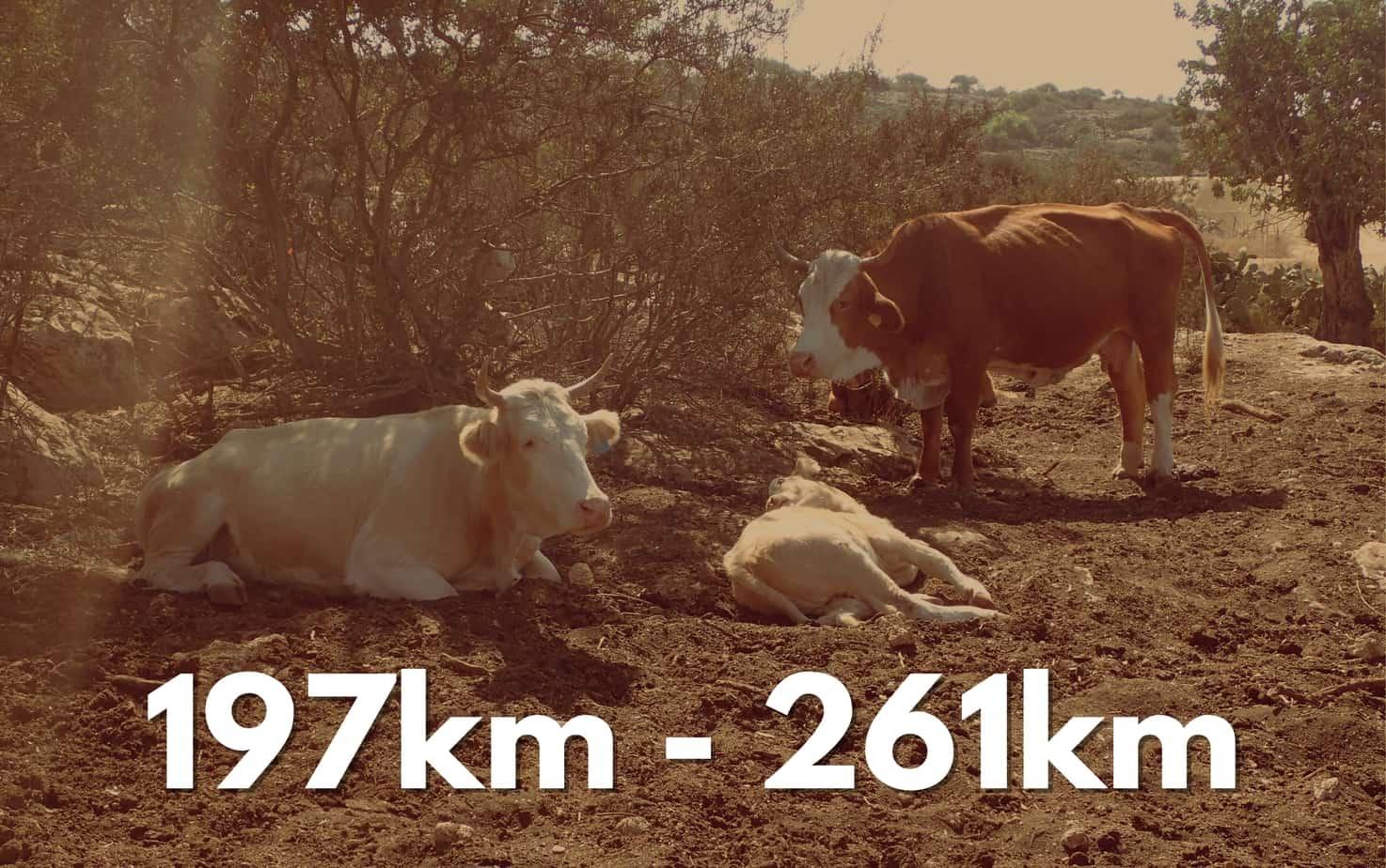 197-261km
