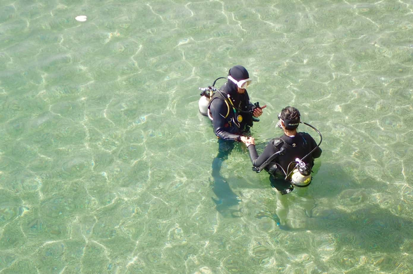 Diving at Dolphin Reef