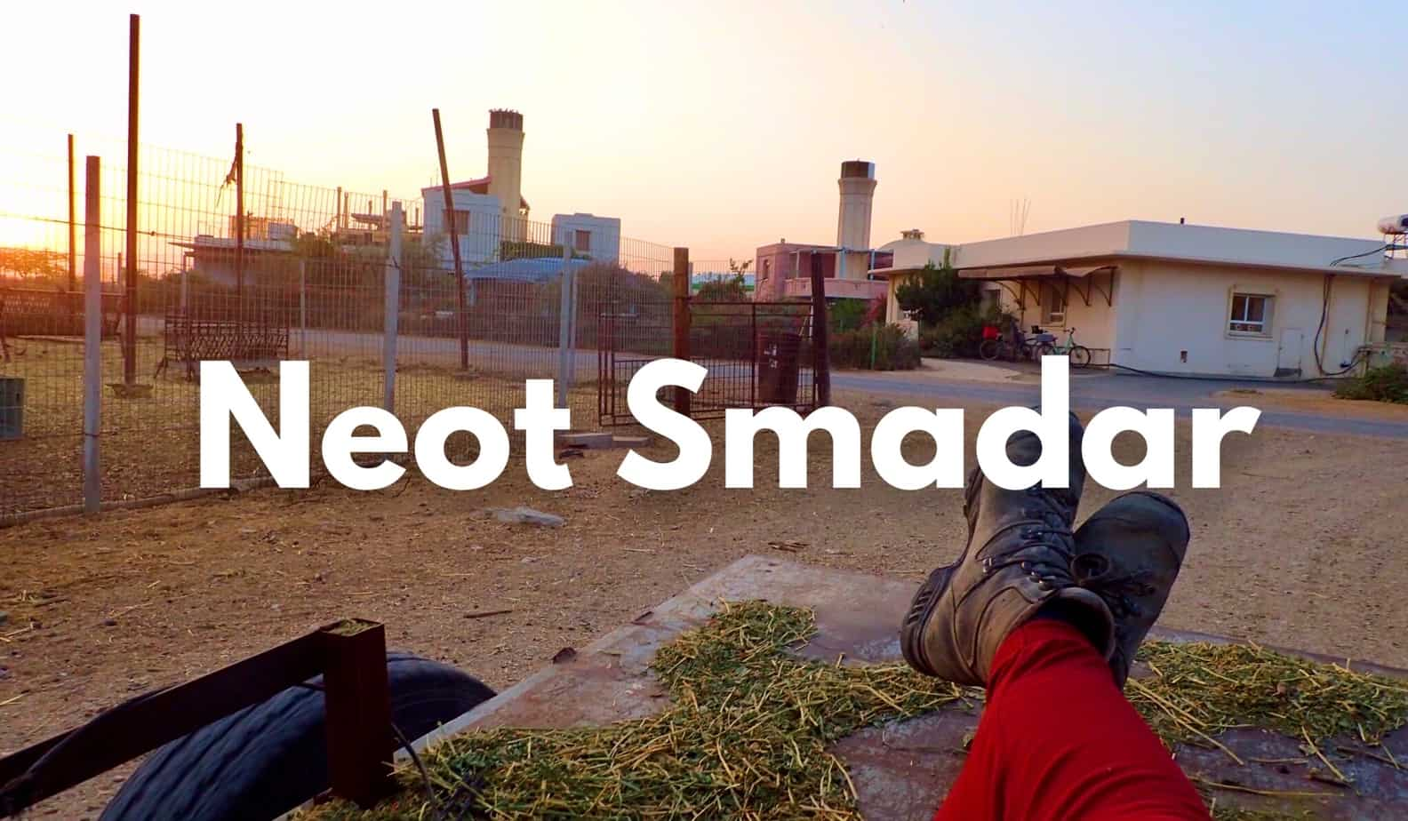 Walking Israel: my day as a hippy