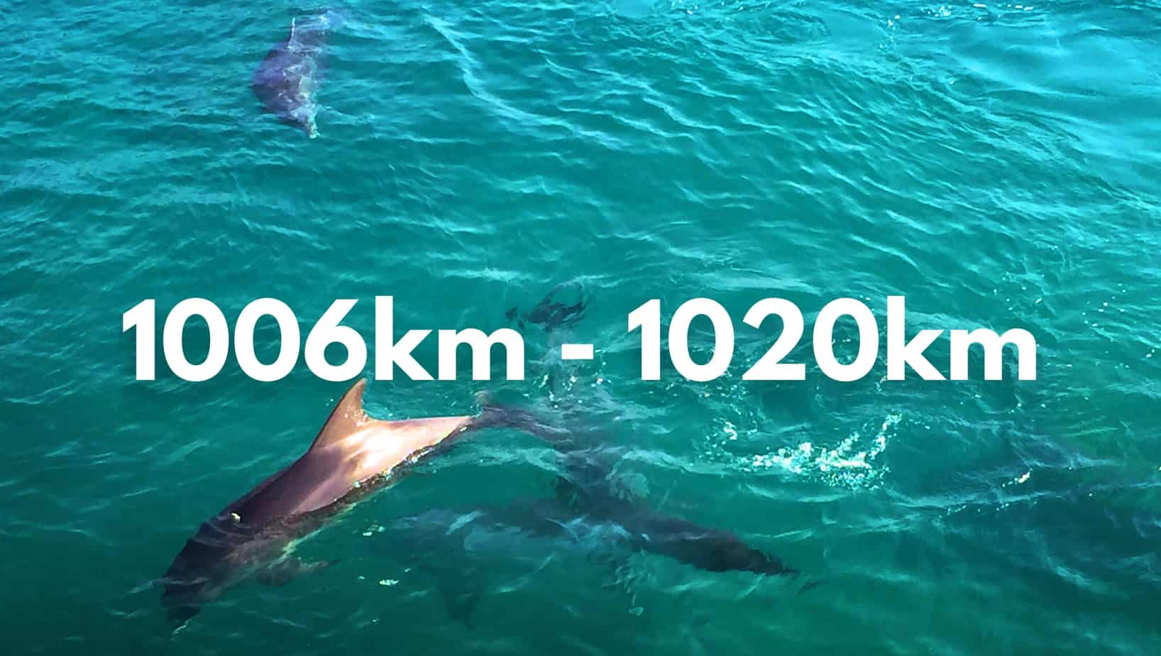 1006-1020km
