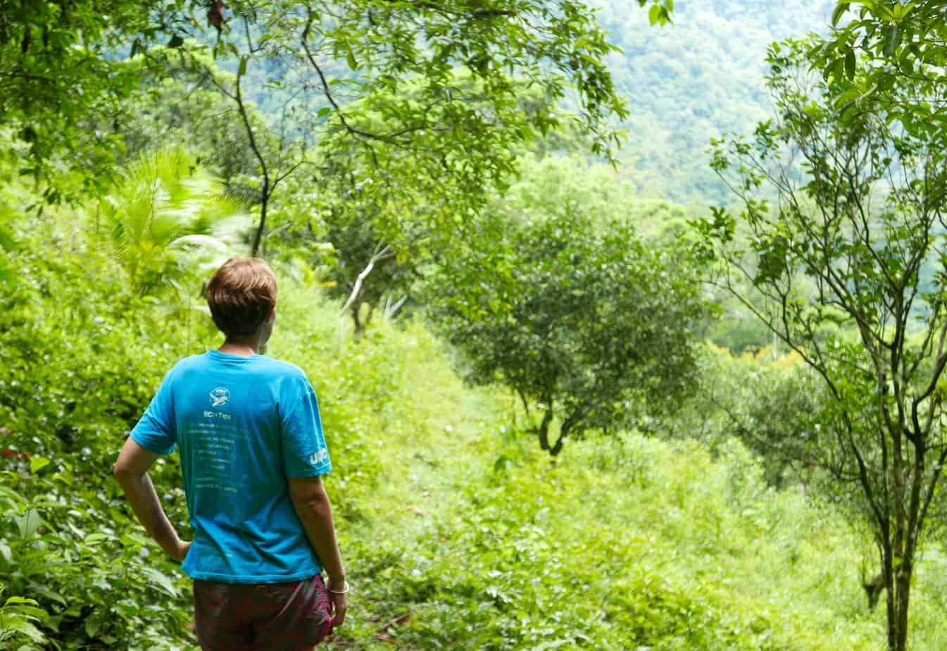 Jungle trek, Pico Binito National Park