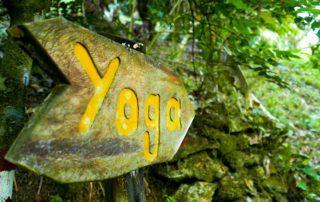 Yoga La Ceiba