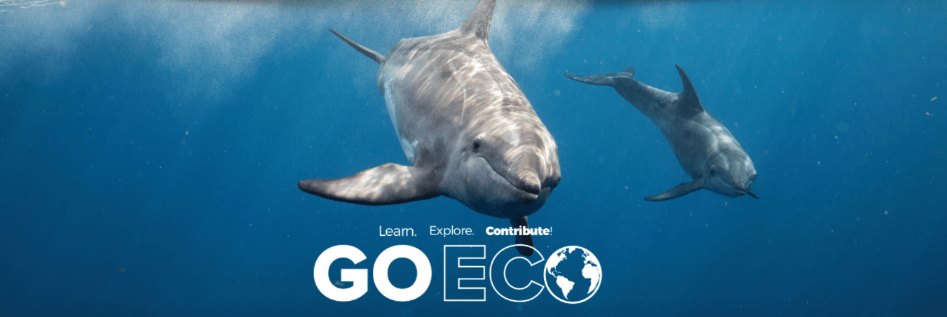A Month Long Training Program Focusing On Teaching You The Knowledge And Skills Needed To Work In Marine Biology Conservation