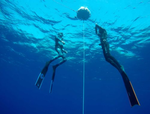 What's it like to hold your breath to 20 meters?