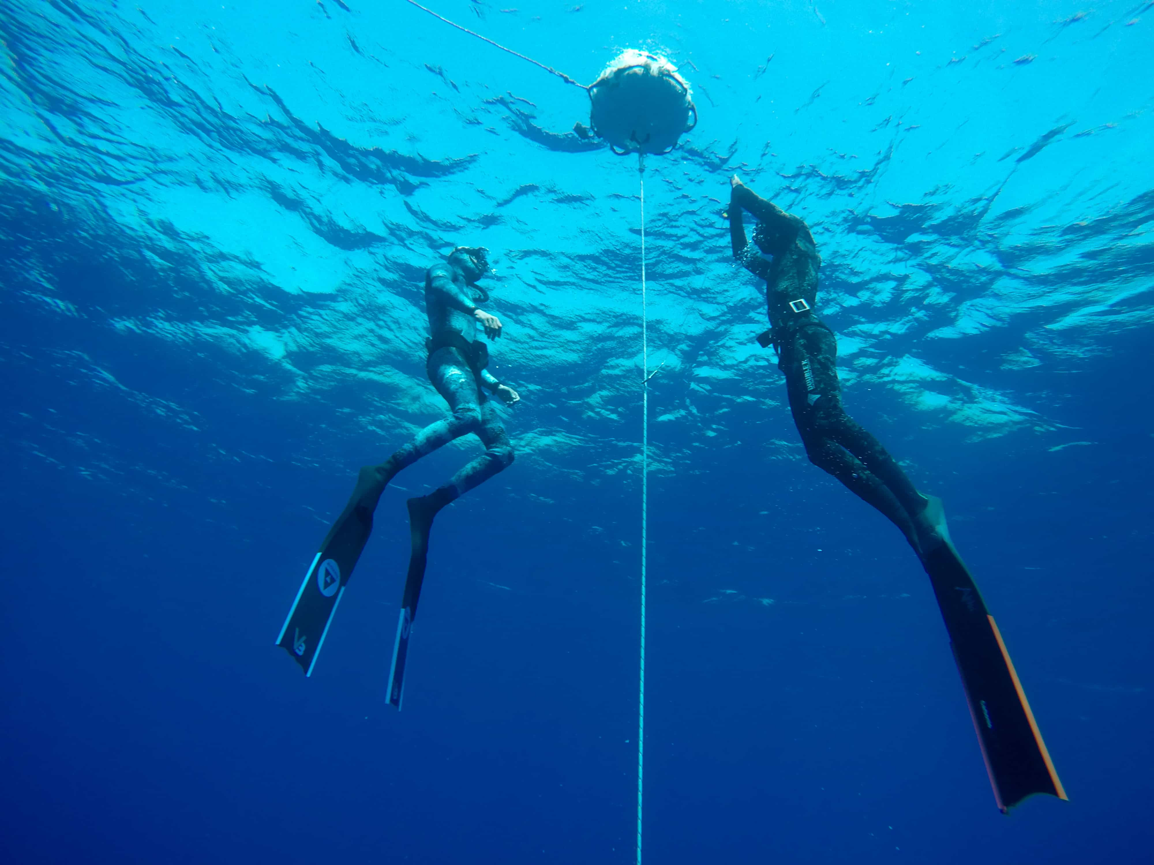 Learning to freedive in Israel
