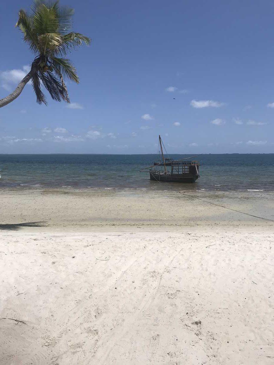 Mafia Island Diving