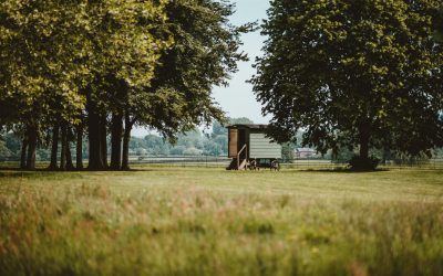 A complete guide to Glamping in Yorkshire